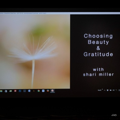 Shari Miller-6