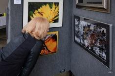 2015 Arb exhibit-29