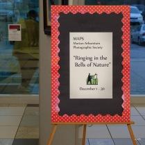 Woodridge Library Dec 2014-3