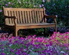 Mary Mehl - bench