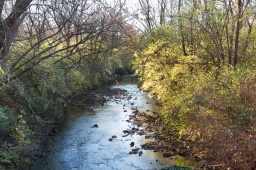 stream wide
