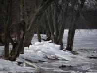 cboveeEagle2 Ice chunks