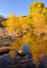 Chuck Hunnicutt - Sabino Canyon-2