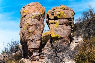 Atala Toy - Rock Gossip in Arizona