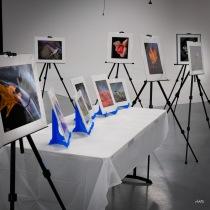 Tim Rex Exhibit-3
