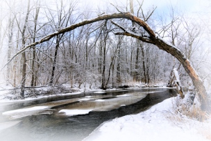 Chuck Hunnicutt ~ Ferson Creek