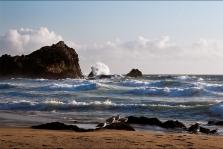 Surf at McClure's Beach