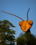 Mary Mehl -bug