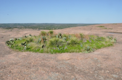Top of Enchanted Rock