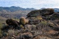 Chuck Hunnicutt - Saguaro NP-3