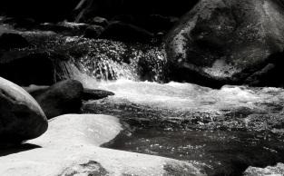 LeConte Creek near Noah Ogle Mill