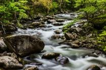 Creek, Tremont Road