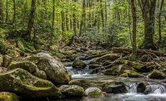 Creek near Roaring Forks