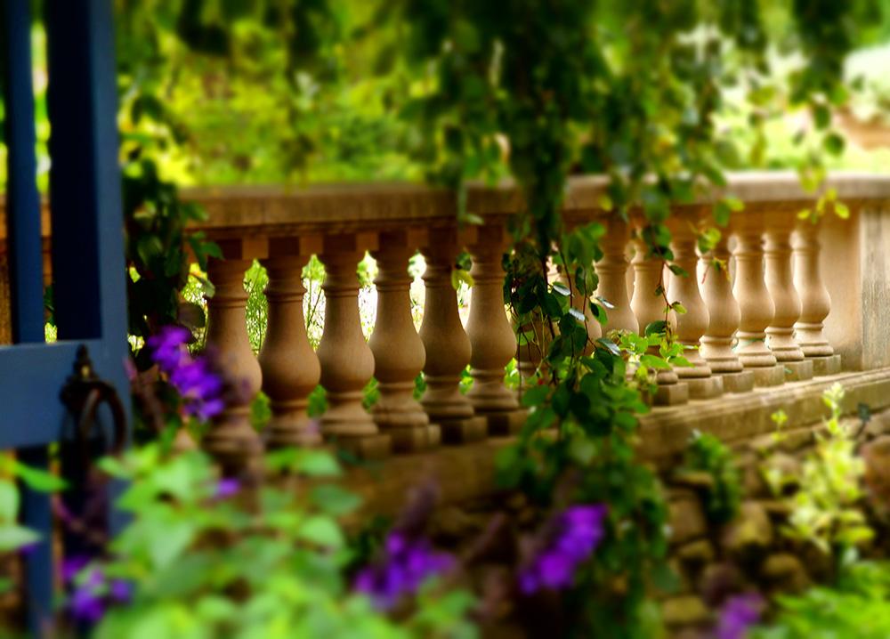 Sunday August 9th 2015 Photo Outing To Chicago Botanic Garden Glencoe Morton Arboretum
